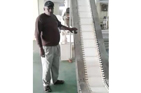 Conveyor For Tea Machinery